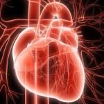 Un altro colesterolo cattivo la lipoproteina LPa
